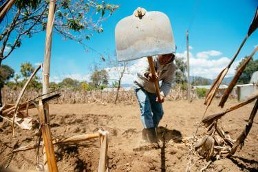 A young man uses a tool to work the soil in guatemala