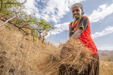 An adult smiles for the camera while cutting grass on a hill in Ethiopia.